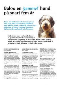 baloo-en-gammel-hund