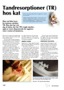 tandresorptioner-hos-kat